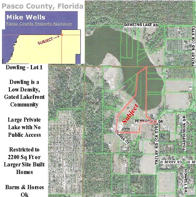 Real estate broker/associate in pasco county florida